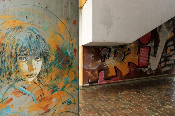 C215 x Ripo (photo by Luna Park)