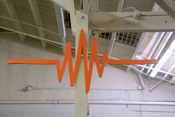 EKG (photo by Luna Park)